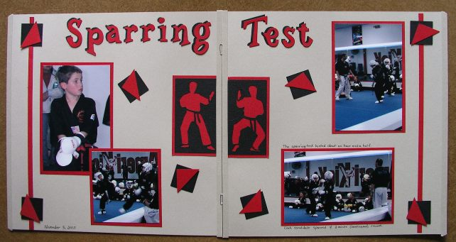"""Sparring Test"""