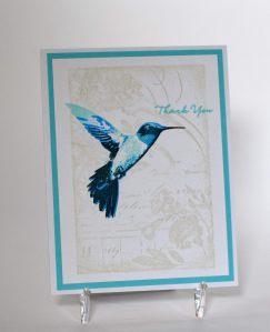 Hummingbird Thank You wwDSC_0897
