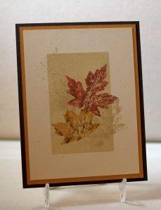Falling Leaves yDSC_2024