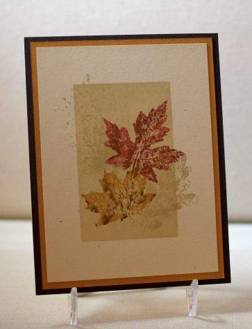 Falling Leaves yDSC_2024.jpg