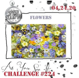 Challenge #224