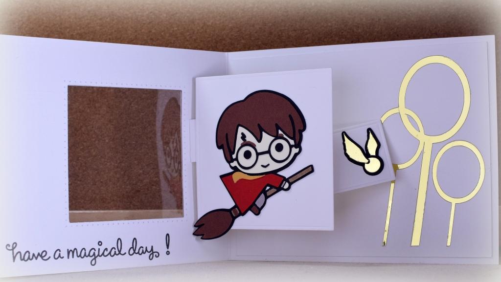 Harry Potter Spinner Pop-Pp 2